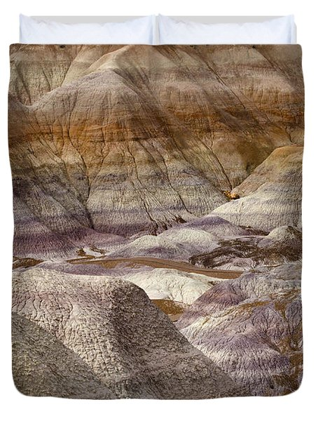 Petrified Forest National Park 4 Duvet Cover