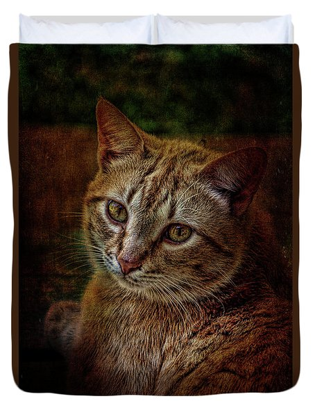 Pets Fat Cat Portrait 2 Duvet Cover