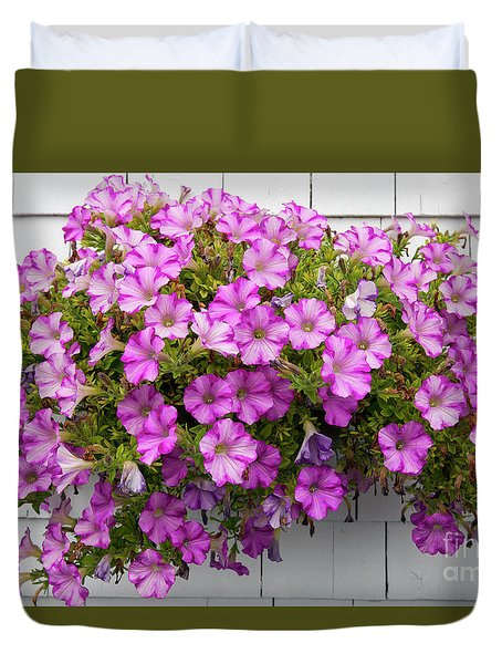 Duvet Cover featuring the photograph Petunias On White Wall by Elena Elisseeva