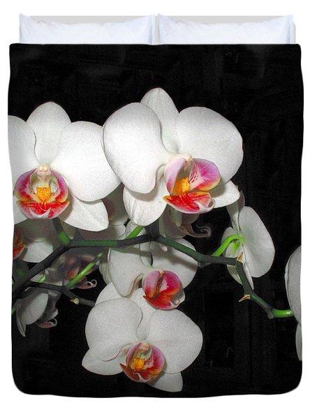 Phalaenopsis Orchids Duvet Cover