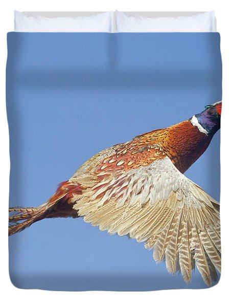 Pheasant Wings Duvet Cover