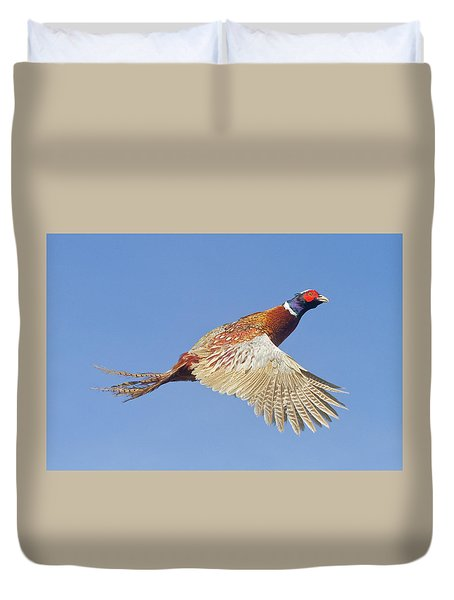 Pheasant Wings Duvet Cover