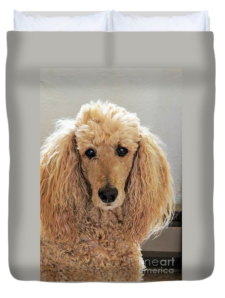 Phoebe Duvet Cover by Michele Penner
