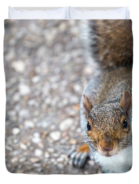 Photo Of Squirel Looking Up From The Ground Duvet Cover