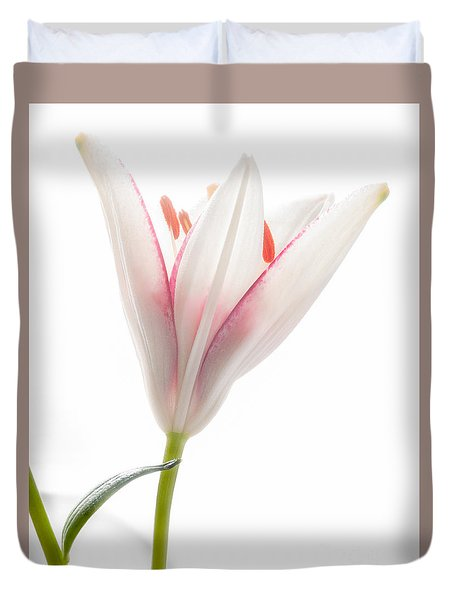 Duvet Cover featuring the photograph Photograph Of A Pale Lily Opening I by David Perry Lawrence
