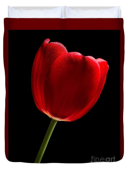 Photograph Of A Red Tulip On Black I Duvet Cover