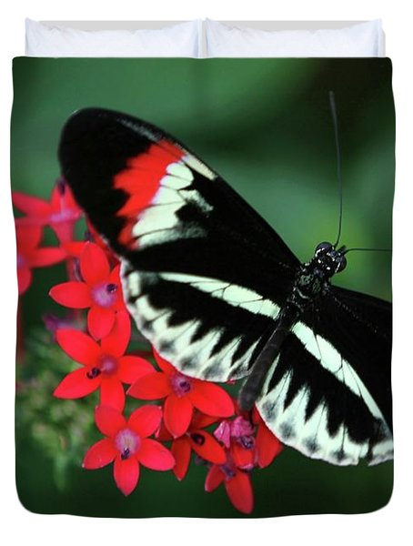 Piano Key Butterfly Duvet Cover