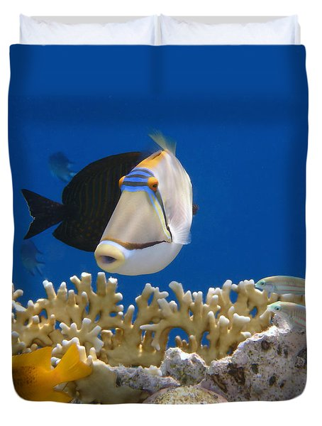 Picasso Fish And Klunzingerwrasse Duvet Cover
