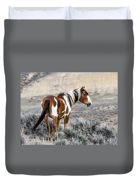 Picasso - Wild Mustang Stallion Of Sand Wash Basin Duvet Cover by Nadja Rider