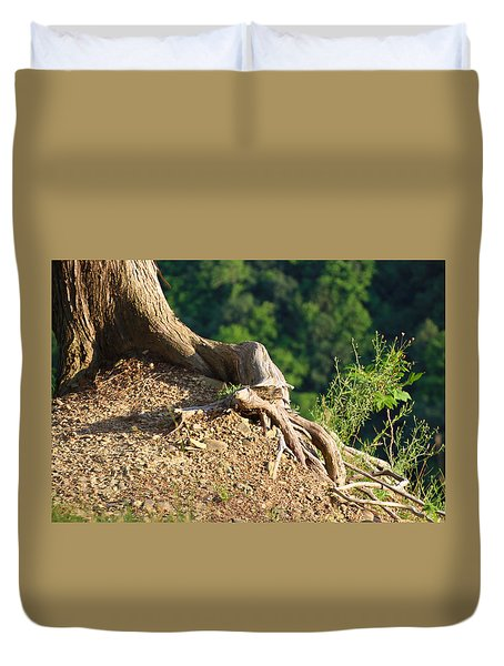 Picture Of A Tree On A Ledge Duvet Cover