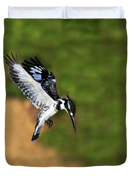 Pied Kingfisher Duvet Cover by Tony Beck
