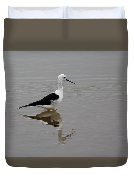 Pied Stilt Duvet Cover by Ramabhadran Thirupattur