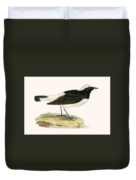 Pied Wheatear Duvet Cover by English School