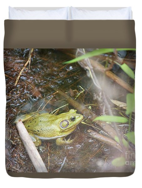 Pig Frog Duvet Cover by David Grant