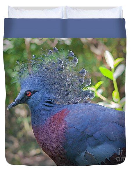 Pigeon Elegante Duvet Cover by Judy Kay