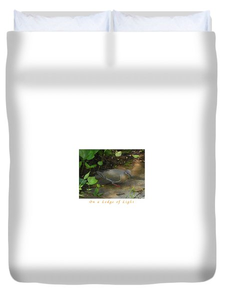 Duvet Cover featuring the photograph Pigeon Poster by Felipe Adan Lerma