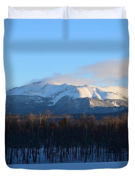 Pikes Peak From Cr511 Divide Co Duvet Cover