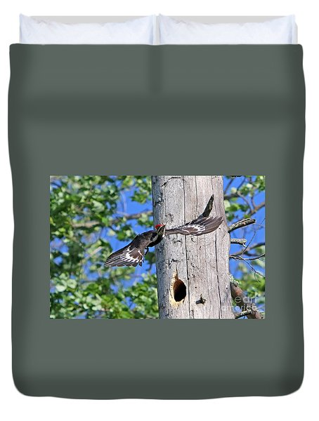 Pileated #27 Duvet Cover by James F Towne