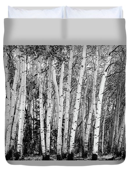 Pillars Of The Wilderness Duvet Cover by James BO Insogna