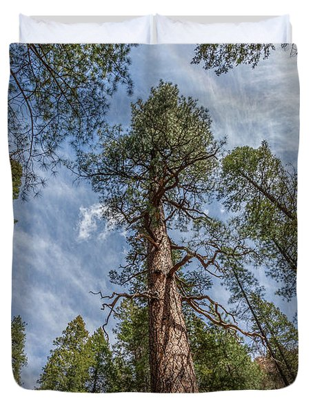 Pine Cathedral On The West Fork Duvet Cover