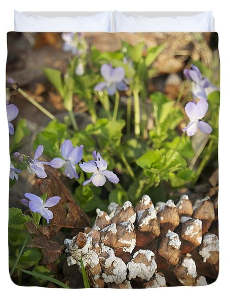 Pine Cone And Spring Phlox Duvet Cover by Michael Peychich