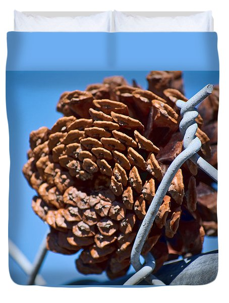 Pine Cone On The Fence Duvet Cover by Cathy Jourdan