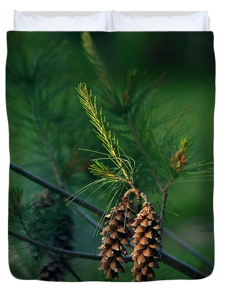 Pine Cones At Dusk Duvet Cover