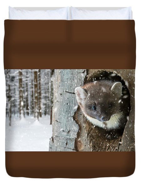 Pine Marten In Tree In Winter Duvet Cover