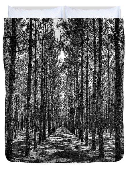 Pine Plantation 5655_6_7 Duvet Cover