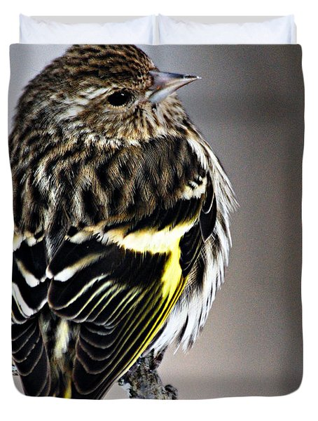 Pine Siskin Duvet Cover by Larry Ricker