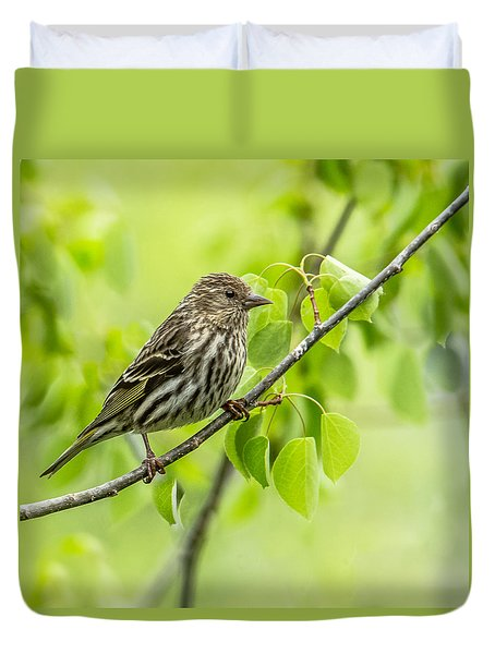 Pine Siskin On A Branch Duvet Cover by Yeates Photography