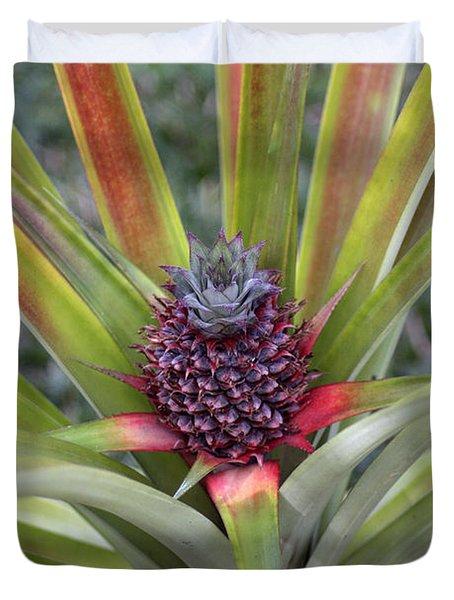 Pineapple, Oahu Duvet Cover