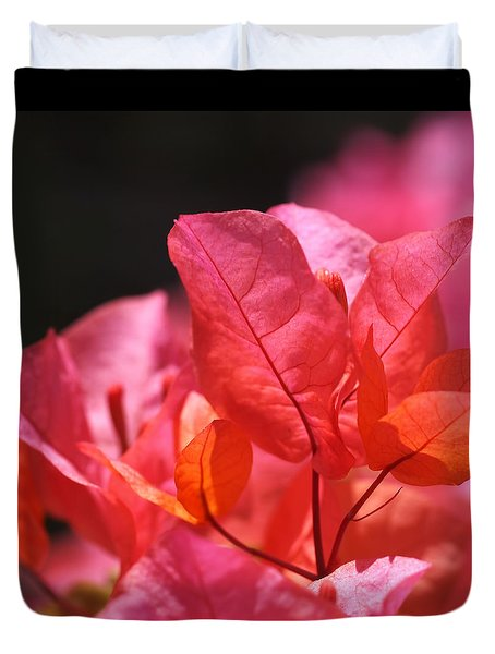 Pink And Orange Bougainvillea - Square Duvet Cover