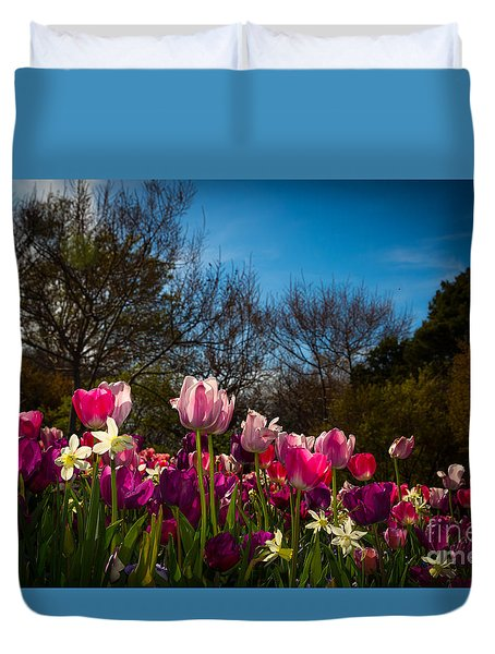Pink And Purple Tulips Duvet Cover by John Roberts