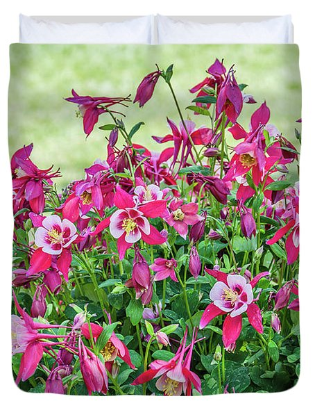 Pink And White Columbine Duvet Cover