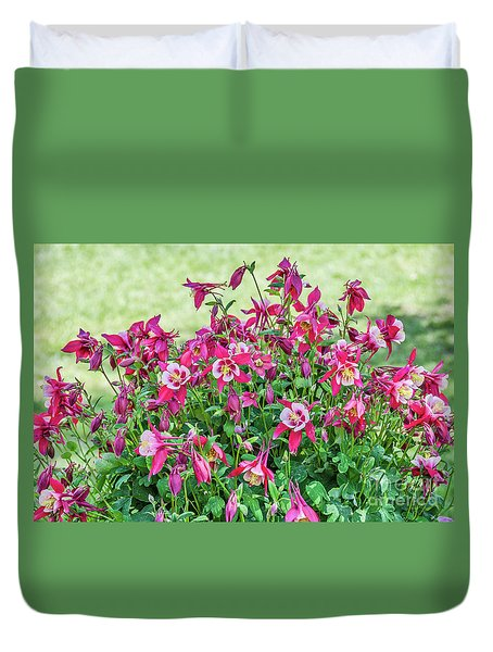 Duvet Cover featuring the photograph Pink And White Columbine by Sue Smith