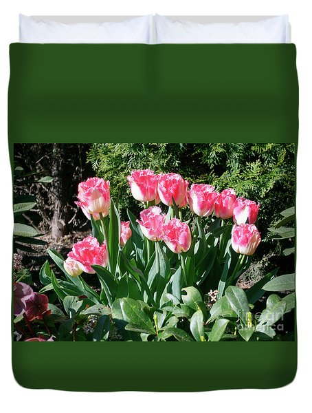 Pink And White Fringed Tulips Duvet Cover by Louise Heusinkveld