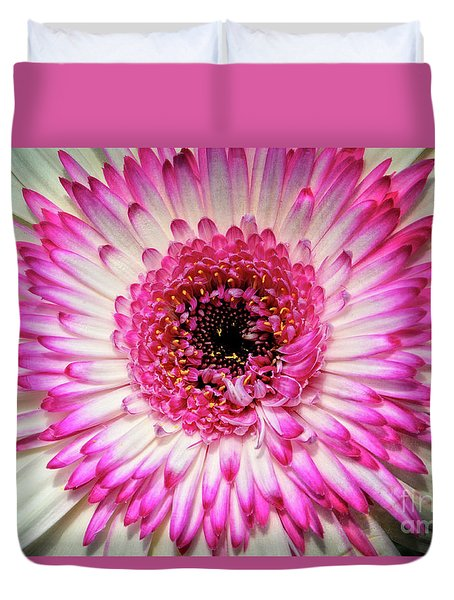 Pink And White Gerbera Daisy Duvet Cover by Jim and Emily Bush