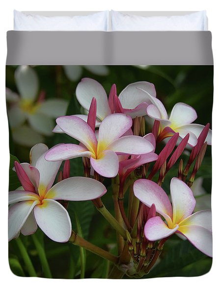 Duvet Cover featuring the photograph Pink And White Plumeria by Pamela Walton