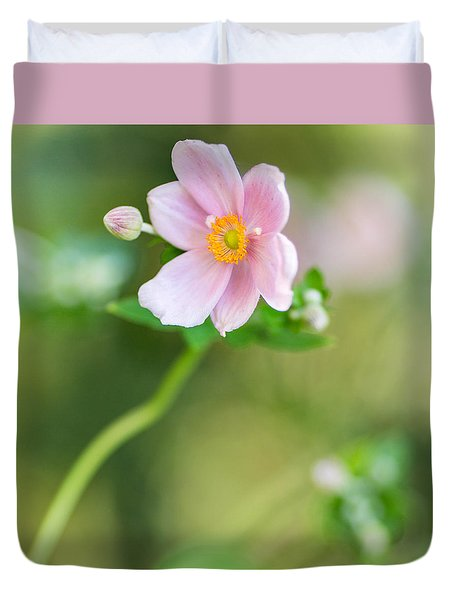 Pink Anemone Squared Duvet Cover