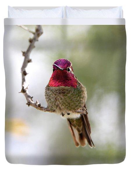 Pink Anna's Hummingbird Duvet Cover