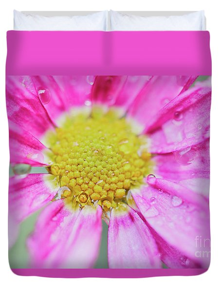 Duvet Cover featuring the photograph Pink Aster Flower With Raindrops by Nick Biemans
