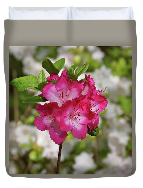 Duvet Cover featuring the photograph Pink Azalea by Sandy Keeton