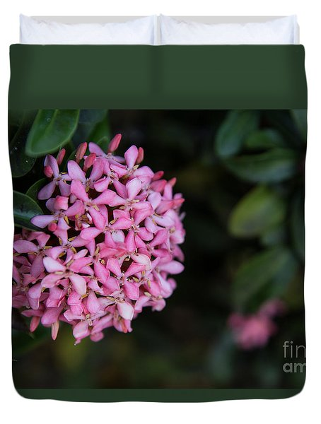 Duvet Cover featuring the photograph Pink Beauty by Suzanne Luft