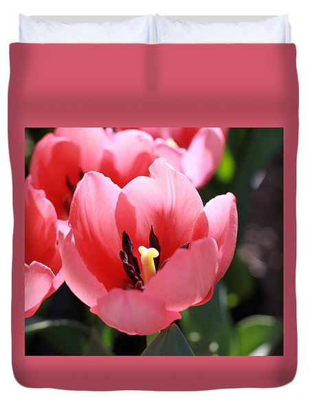 Pink Bloom Duvet Cover
