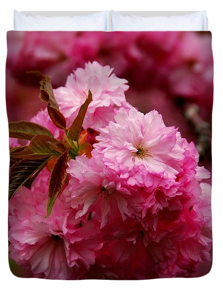 Pink Blooms Duvet Cover