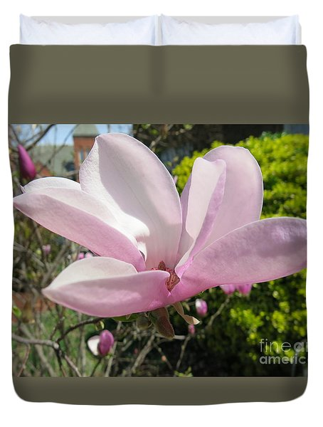 Pink Blossom 1 Duvet Cover by Rod Ismay
