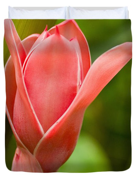 Pink Blossoming Flower Duvet Cover by Tomas del Amo - Printscapes