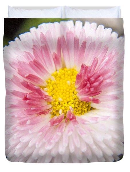 Pink Button Flower Duvet Cover