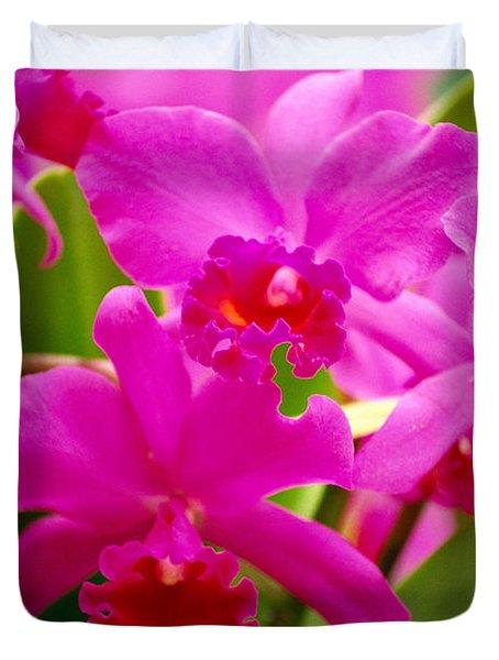 Pink Cattleya Orchids Duvet Cover by Allan Seiden - Printscapes